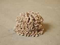 "Artwork By Naga ""Flowers"" 2012"