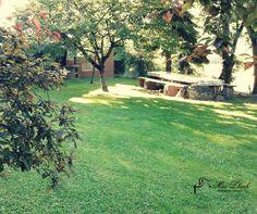 Al nostre planell tenim a punt sempre la zona de barbacoa. Stepping Stones, Outdoor Decor, Plants, Home Decor, Barbecue Area, Homemade Home Decor, Flora, Plant, Decoration Home