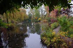 Le jardin d'eau de Monet à Giverny à l'automne. Monet's pond at Giverny in the late fall.