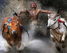 joyendofrun 20 Epic Photos Which Tell Powerful Stories | #people #water #bulls #speed #photography #inspiration <<< found on www.creativenerds.co.uk pinned by www.BlickeDeeler.de