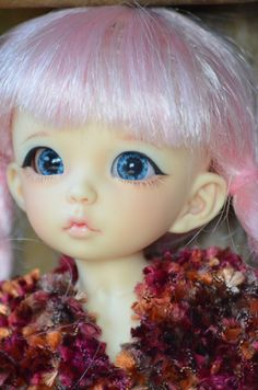 Megan. Fairyland Littlefee Ante