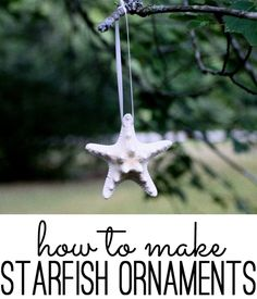 how to make your own starfish ornaments--contains link for a good source of shells and starfish for all kinds of crafts