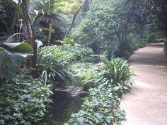 La Concepcion - Jardin Botanico - Historico de Malaga (Botanical Garden in Malaga)