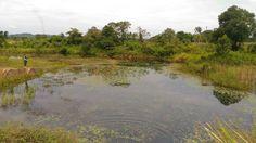 Lokasi pemancingan di daerah PLTU embalut tenggarong sebrang, samarinda, kalimantan timur, Indonesia.