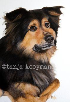 Bordercollie mix dogart petportrait by Tanja Kooymans