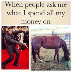 When people ask what I spend all my money on - Horses Funny - Funny Horse Meme - - When people ask what I spend all my money on The post When people ask what I spend all my money on appeared first on Gag Dad. Funny Horse Memes, Funny Horse Pictures, Funny Horses, Funny Animals, Horse Humor, Hilarious Memes, Videos Funny, Pretty Horses, Horse Love