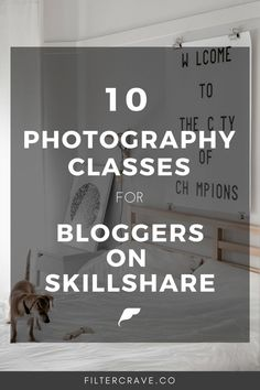 Making The Right Choice: Choosing An Online Education Institution Photography Classes For Beginners, Photography Tutorials, Photography Tips, Online Photography Classes, Beginner Photography, Photography Camera, Creative Photography, Photography Courses, Mobile Photography