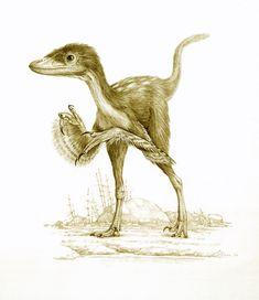 Sinornithosaurus by Mick Ellison.