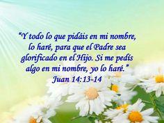 Juan 14-13-14