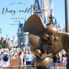 2017 Packages now available!  Contact me and let's make some magic for your family next year . sarah@lbactravel.com  #waltdisneyworld #vacation #travel #travelagent #travelplanning #takemeaway #disney #wdw #magickingdom #tweet #pin #momlife #magic