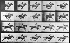 Eadweard Muybridge, 'Horse in Motion'. Wealthy railroad baron Leland Stanford liked to breed horses, and wanted to solve a problem which had perplexed humans for millennia: do horses ever lift up all four legs at the same time? On a mission, Muybridge went to Sacramento racetrack and set up a row of twenty-four cameras, ready to be triggered every four seconds. His Motion Studies represent the first time we could see faster than our own eyes - the first visual intrusion into the flow of…