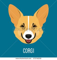 Corgi. Nature, domestic animal theme. Abstract flat welsh corgi portrait isolated on blue for card, placard, book, album, invitation, poster, t-shirt, note, sketch book etc. Raster copy.
