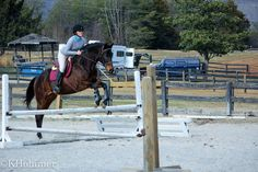 """In the lower photo, although your horse was good, your release was definitely LATE! Look how your elbows were still back by your hips..."" Rob Gage explains to this rider why her release was late. Click on the link below to read more!"