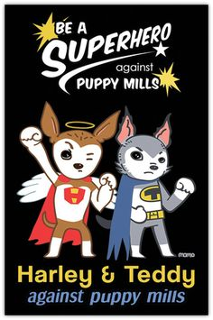 Be a Superhero Against Puppy Mills – Harley's Dream