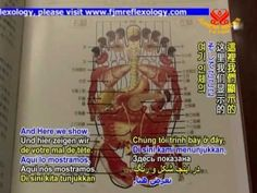 Father Josef Eugster and the New Foot Health Method Catholic Priest, Acupressure Points, Central Nervous System, Reflexology, The Cure, Father, Mary, Teaching, Health