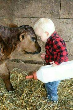 How stinkin cute!! I remember as a kid feeding orphan calves!