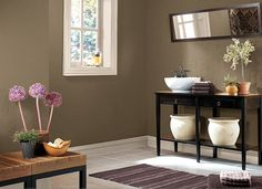 perfect brown wall color