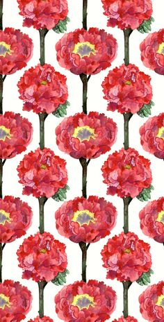 Luxurious poppies pattern