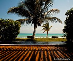 this is my dream.... Bungalow Suite - Le Reve, Playa del Carmen