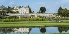 Bordeaux vs. Burgundy: the Difference between France's Two Most Popular Wines   vine pair