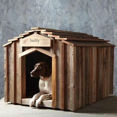 41 DIY Pet Projects - From Simple Structure Dog Houses to Funky DIY Feline Toys (TOPLIST)