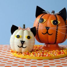 Cute as a ... well, you know! Here's how to make a button-eyed cat pumpkin this Halloween.