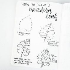 Hi friends, glad to be back posting! Here's a simple tutorial to draw a monstera leaf. Play with the shape and the number of slots and…