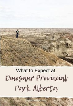The Ultimate Dinosaur Provincial Park Travel Guide - Taylor On A Trip Dinosaur National Park, Dinosaur Park, Badlands National Park, National Parks, Alberta Travel, Road Trippin, Staycation, Picnics, Vacation Ideas