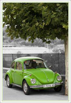 VW escarabajo verde _ green VW beetle | Flickr - Photo Sharing!