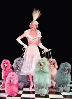 Doris Day and her dogs.