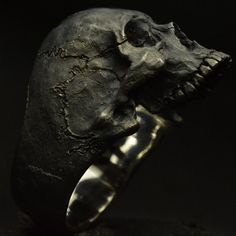 Into The Fire Jewelry  Skull ring Mid size half jaw silver