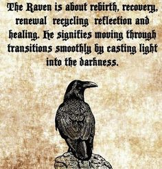 The Characteristics of the Raven as a Spirit Animal – Witches Of The Craft® – Norse Mythology-Vikings-Tattoo The Raven, Raven Art, Raven Totem, Rabe Tattoo, Animal Meanings, Animal Symbolism, Viking Quotes, Animal Spirit Guides, Raven Spirit Animal