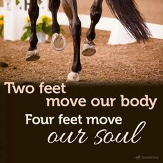 Two feet move our body, four feet move our soul. #horse #love #quote