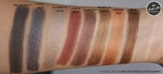 Coastal Scents Hot Pot Eyeshadow Singles Collection: Swatches and Reviews