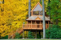 The Treehouse at Longwood Gardens