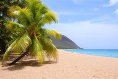 Where my parents live. Lucky them !  Deshaies, Guadeloupe