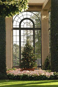 Christmas, Longwood Gardens, Pa | Trish Tritz, Fine Art America