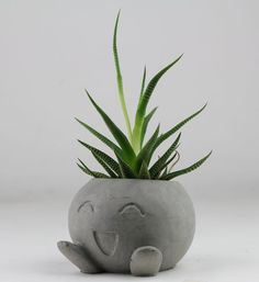 Concrete Oddish Planter, Air Plant Holder, Succulent Planter, Pokemon Planter Dimensions: L - 3 W - 3 H - 2 Cork pads attached. Indoor Planters, Diy Planters, Ceramic Planters, Hanging Planters, Planter Pots, Indoor Herbs, Indoor Gardening, Tall Planters, Modern Planters