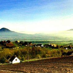 Szentgyörgyhegy, Balaton, Hungary, vineyards