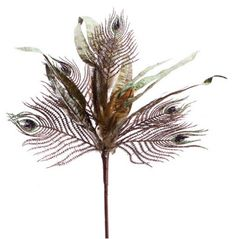 """Melrose Club Pack of 12 Artificial Brown and Blue Glittered Peacock Feather Sprays 34"""" Blowout Deals"""