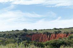 Ground erosion between the bushes Ground erosion between the bushes with beautiful clouds.
