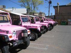 Pink Jeep Tours in Sedona,AZ