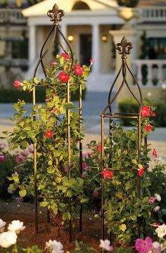 Covered in climbing roses and clematis, the freestanding Fleur-de-lis Trellis brings a dramatic addition to your landscape or oversized planter.  | Frontgate: Live Beautifully Outdoors