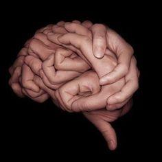 Le cerveau attentif de Jean Philippe LACHAUX. Contrôle, maîtrise et lâcher prise