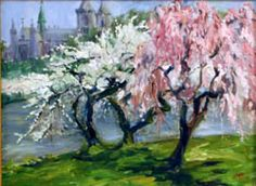 'Cherry blossoms in Branch Brook Park' Susan F. Greaves