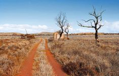 Dust bowls and deluges: the harsh beauty of South Australia | Art and design | The Guardian Weather Storm, Next Us, Dust Bowl, Top Soil, Moon Rise, Closer To Nature, Extreme Weather, South Australia, Abandoned Places