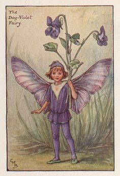 Flower Fairies: The DOG VIOLET FAIRY Vintage Print c1930 by Cicely Mary Barker