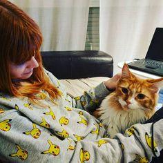Haciendo una nueva amiga  @florencethemainecoon con @cristianjs.23 #catsofinsta #catsofinstagram #catsoftheworld #ilovecats #cats #mainecoon