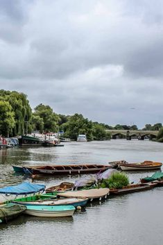 Walk from the town center down Water Lane to the Riverside. You will cross the great house cinema and many traditional english pubs. There is also an artisan market on weekends which you can enjoy. #ilandedhere #richmond #london #londoneighbourhoods #londontravel #londonguide #londontraveltips #mustseeinlondon #nottomissinlondon #londonphoto #pubsoflondon London Must See, Richmond London, London Guide, London Photos, London Travel, The Neighbourhood, Artisan, Cinema, English