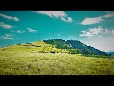 Βουνοπλαγιά Αυγό με θέα την Άνω Χώρα - YouTube Greece, Mountains, Nature, Youtube, Travel, Greece Country, Naturaleza, Viajes, Trips